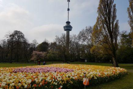 Sprintranking (17): Meppel en Rotterdam